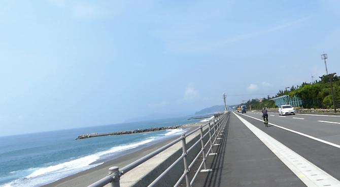 ジブリ旅 高知 桂浜花街道