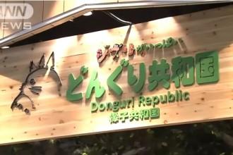 「どんぐり共和国」上海店